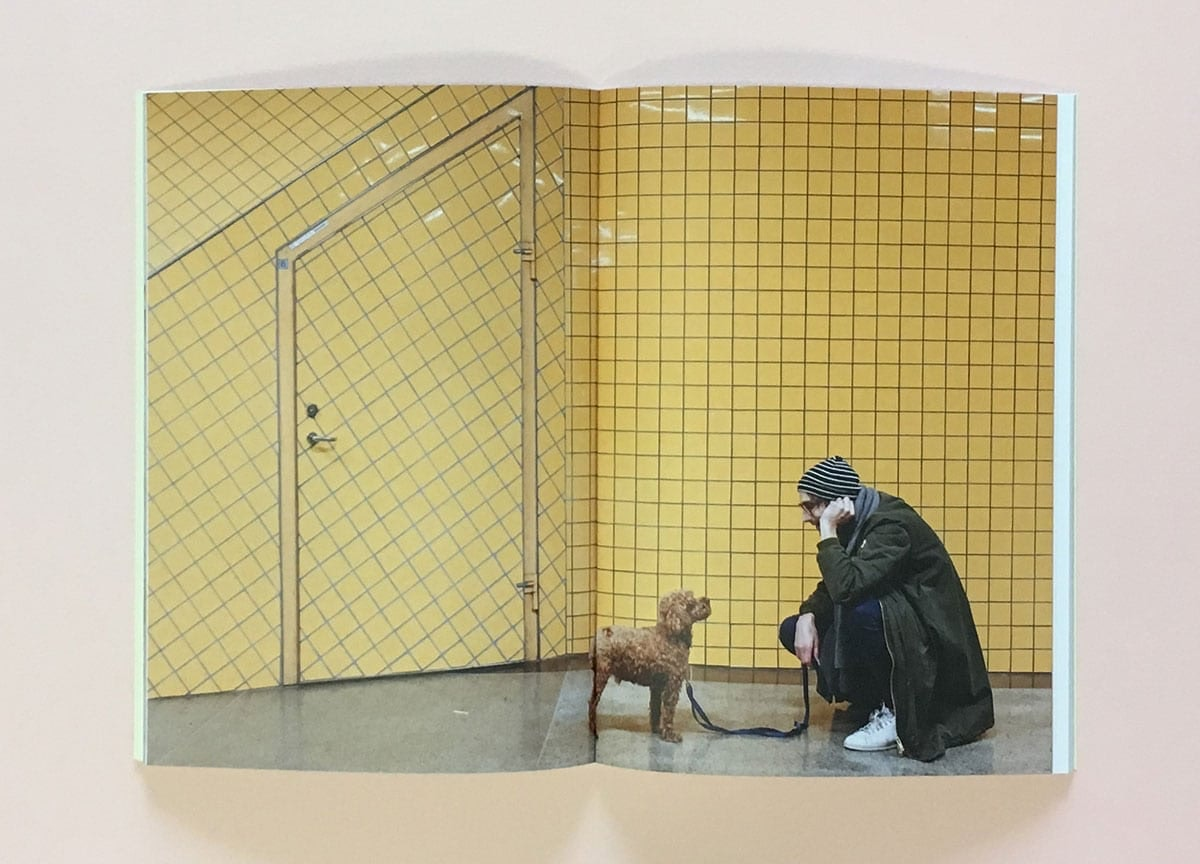 pet-people-magazine-poodle