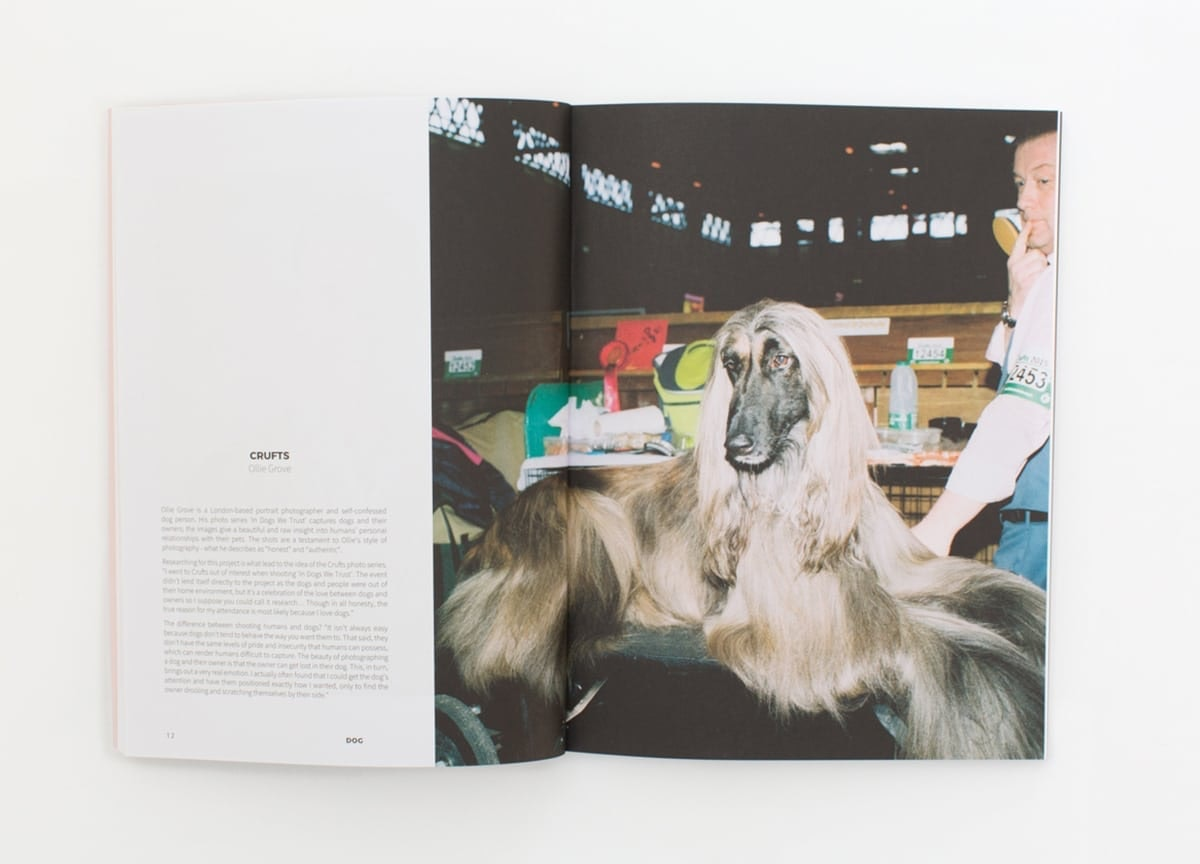 read-dog-magazine-shiba-inu-crufts