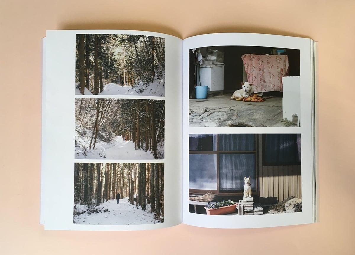 read-dog-magazine-shiba-inu-kyoto