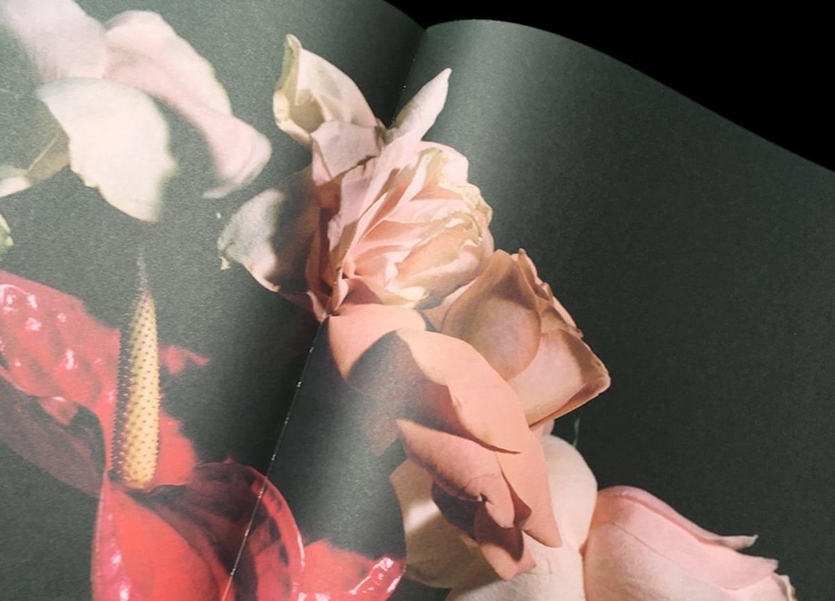 romance-journal-emotions-petals