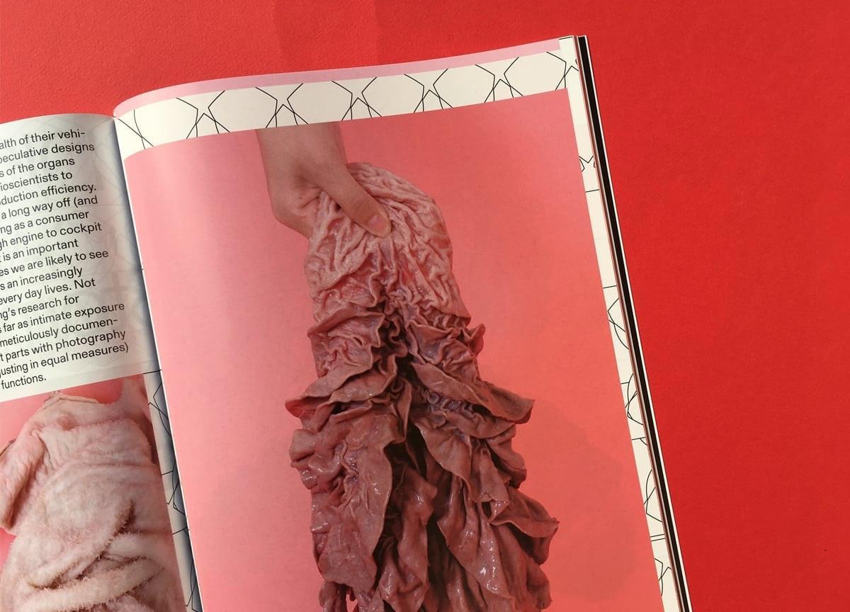 mold-magazine-food-future-digestive-cow