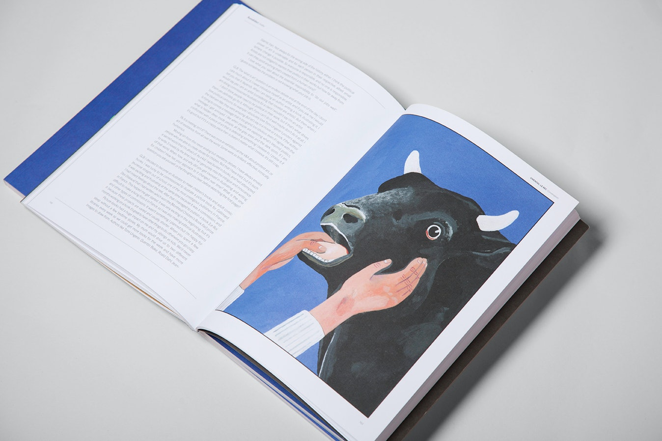 autodidact-magazine-cow