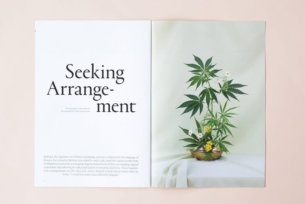 broccoli-magazine-seeking-arrangement